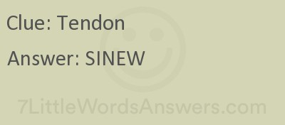 Tendon 7 Little Words Bonus 7littlewordsanswers Com